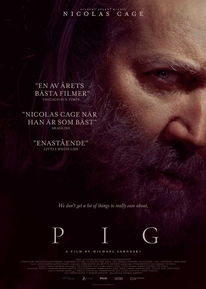 You are currently viewing Pig